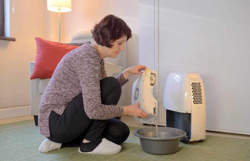 dehumidifier-guide